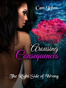 Interview With Cam Johns, Author of The Arousing Series